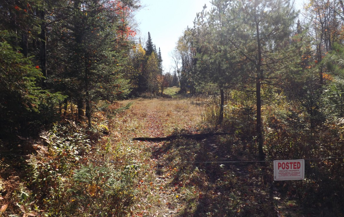 108 acres Hunting Land for sale Forestport NY
