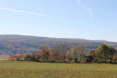14 acres Building Site for sale Upstate NY