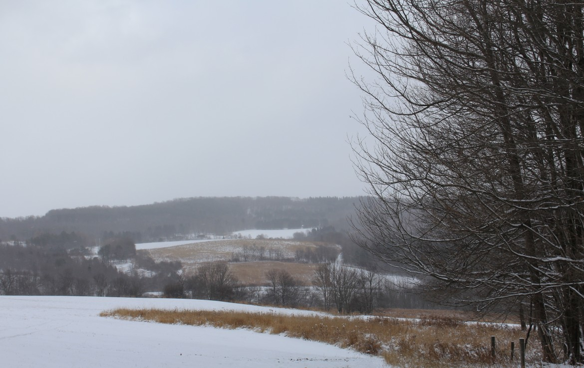 30 acres Country Property for sale Sherburne NY