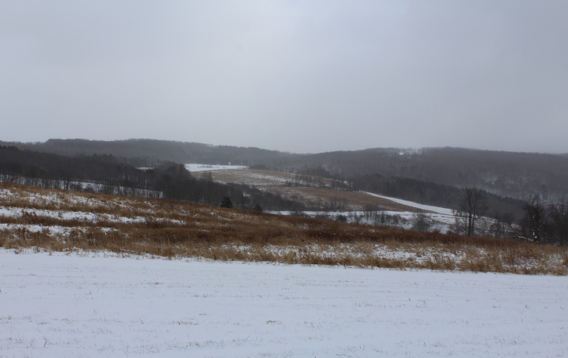 30 acres hunting land for sale upstate ny