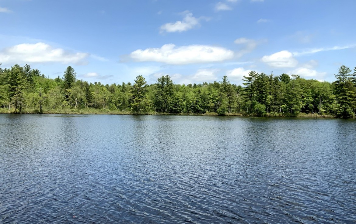 9 acres waterfront land for sale in Amboy, NY!