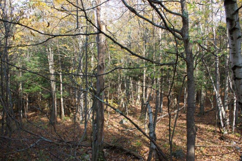 Recreational land for sale Hermon NY