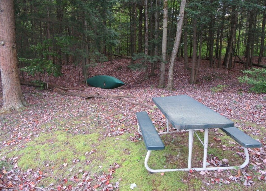 Building Site for sale on Francis Lake ny