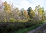 Land for sale with Owner Financing in Hermon, NY