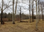 riverfront home for sale with hobby farm ny