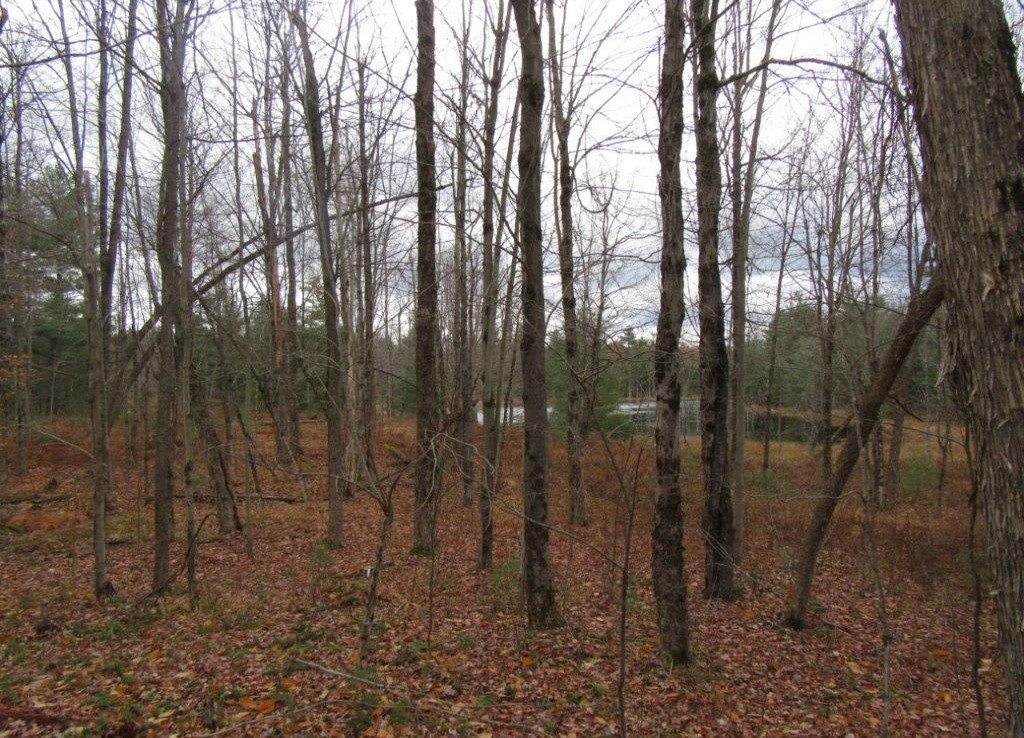 Camp and pond on hunting land for sale ny