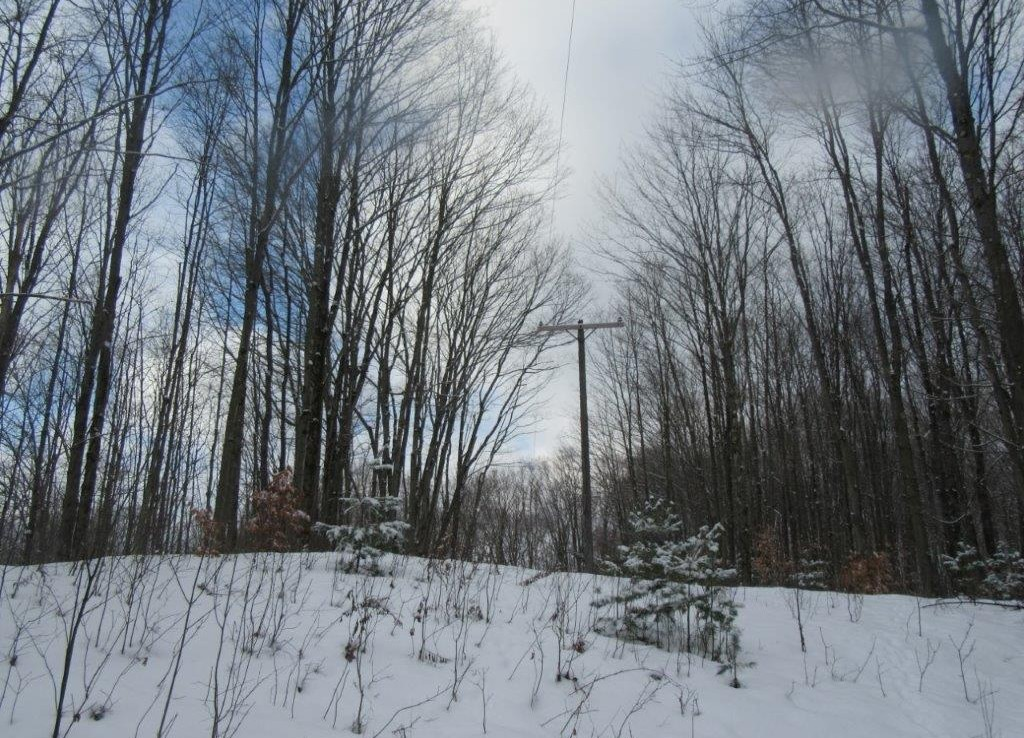 building site for sale camden ny