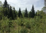 Just $570/acre, a great land deal!