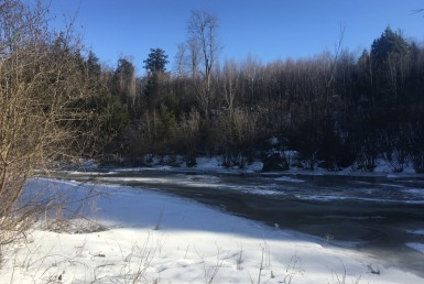 5 acre Building Lot on Little River Russell NY