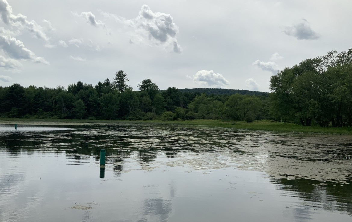 155 acres Prime Hunting and Fishing Land Milford NY