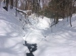 75 acres Hunting Land for sale Lee NY