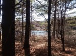 27 acres Hunting Land for sale with 14 acre Private Pond in Lebanon, NY!