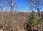 200 acres Hunting Land for sale bordering Beartown State Forest in Croghan, NY!