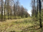 10 acres Approved Building Lot Florence NY