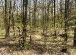 10 acres great hunting land for sale and year-round country home or cabin site in Florence, NY!