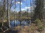 51 acres Hunting Land for sale bordering Brasher Falls State Forest in Brasher, NY!