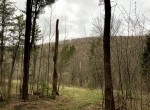 10 acres Hillside Hunting Land for sale in Madison County, NY!