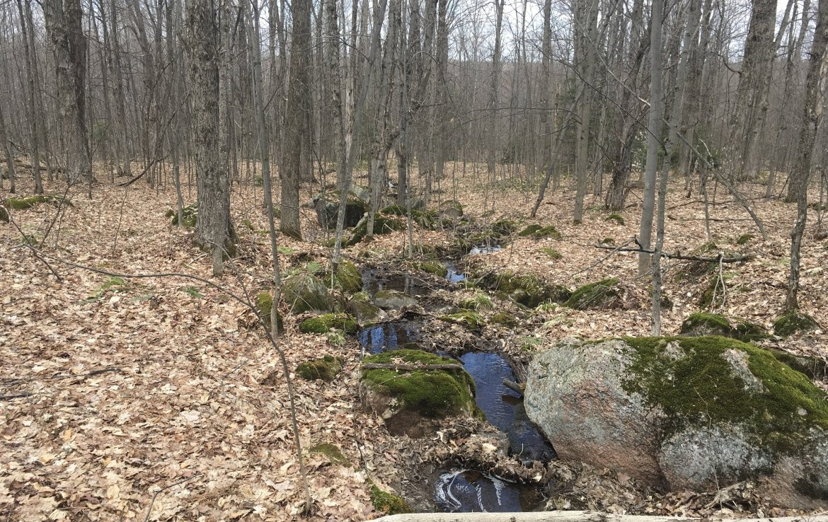61 acres Hunting Land for sale on a quiet dirt road, located in Franklin County, NY!
