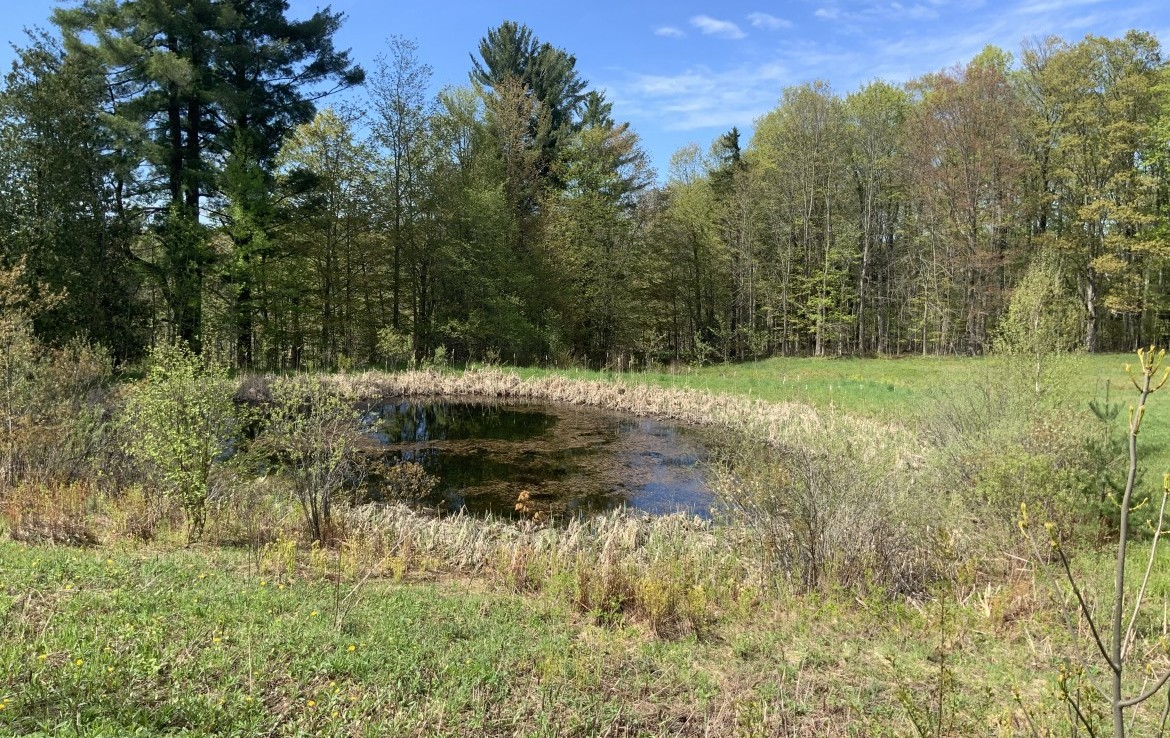 Charming farmhouse with acreage right down the road from Happy Valley Wildlife Management Area.