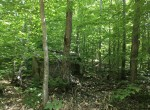 Located in Franklin County, this 26.72 acre property would make a great place to build a base camp to use for all of your outdoor activities.