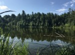 8.5 acres Hunting Land and Cabin for sale with Pond Waterfrontage in Edwards, NY!