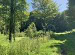1.16 acre homesite or RV site with driveway, well and barn for sale in Oswego County!