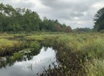 9 acres Hunting and Fishing Land for sale on Little River with Cabin!