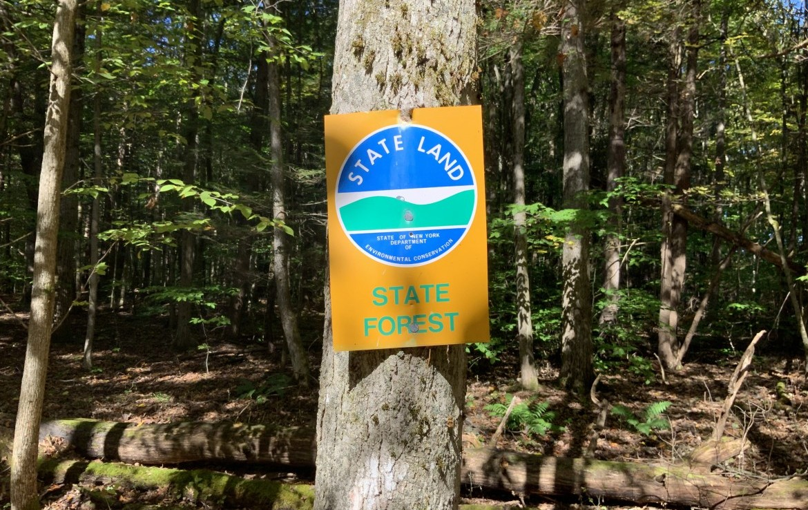 Walk to Rural Grove State Forest for additional hunting Lands!