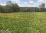 1.16 acre Country Home Site for Sale in Parish, NY!