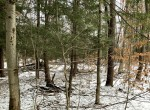 Nice wooded building site with electric available on town road.