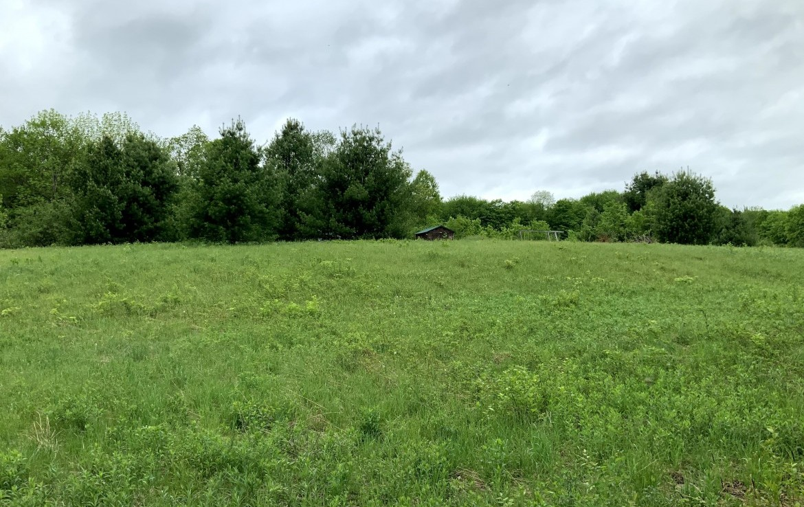 7 acre Waterfront Land for Sale on Mack Brook, Annsville, NY!