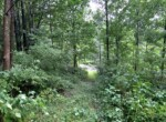 26 acre Prime Whitetail and Turkey Hunting Land For Sale, Lebanon, NY!