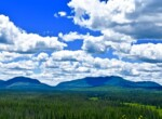 6.75 acres Adirondack Land For Sale with Off-Grid Building Site, Malone, NY!