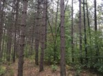 7 Acre Country Home or Cabin Building Lot Russell NY!