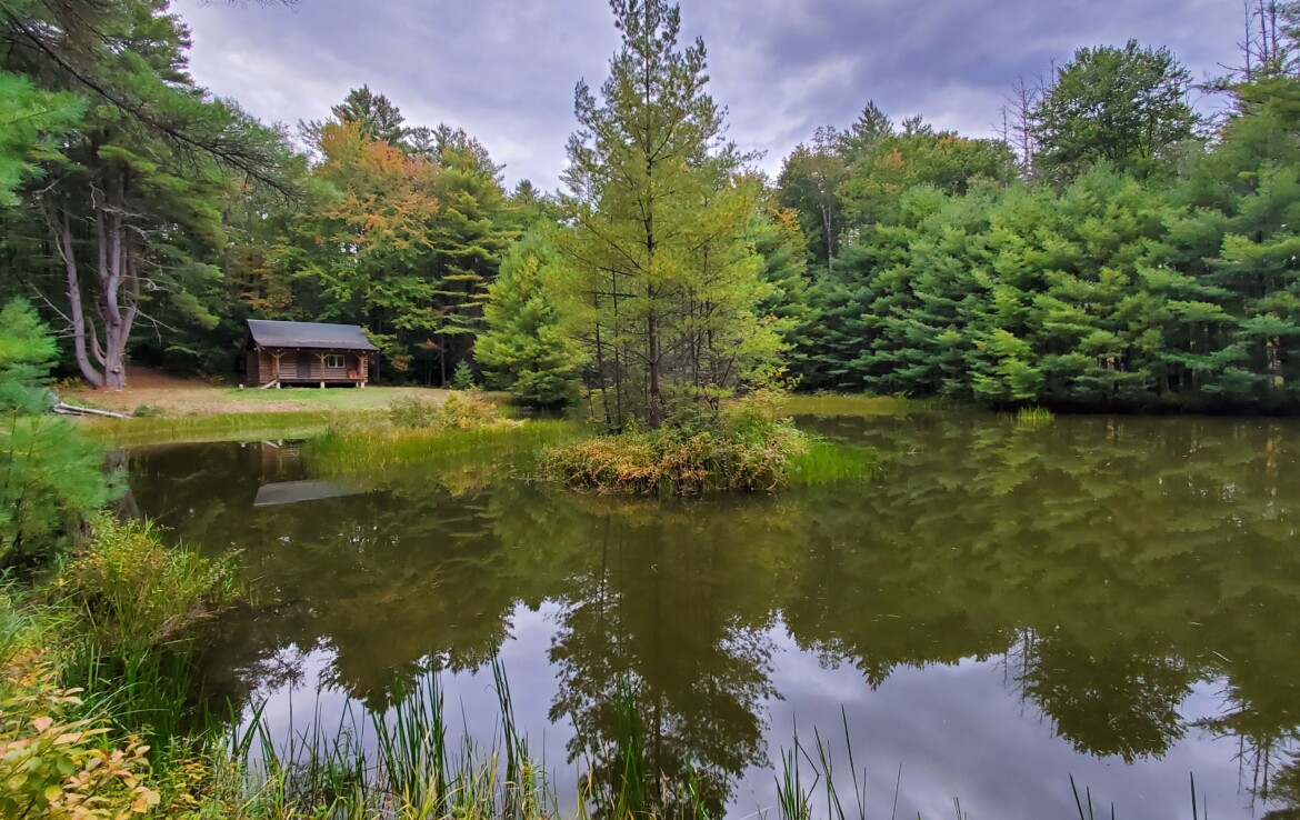 13 acres For Sale with Log Cabin and Ponds, Constantia, NY!