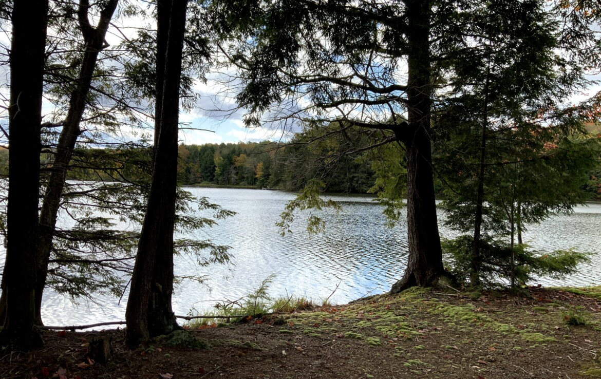 Incredible Lake Views with Driveway, Building Pad, and Electric Available!