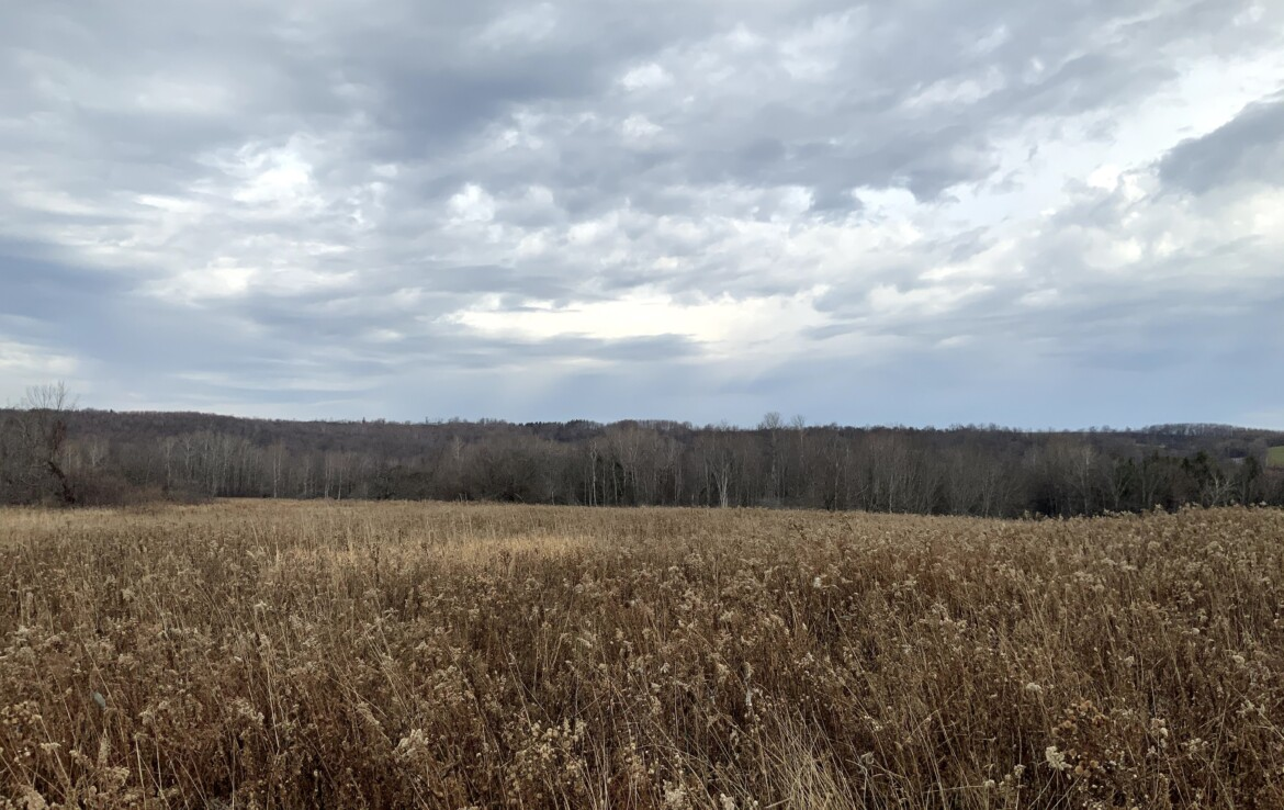 20 acres in Foothills of the Adirondacks Schuyler NY