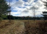 Pure County Setting with Multiple Building Sites and Electric Available!