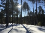5 Acre Cabin Site with Mountain Views Malone NY