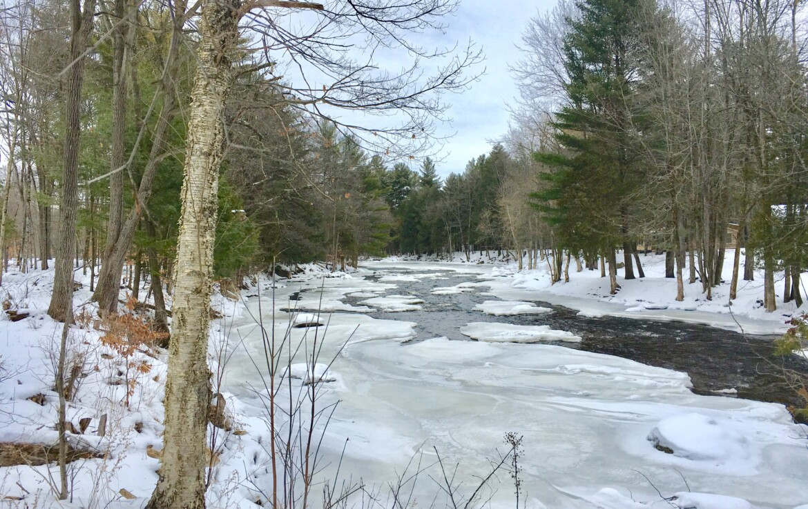 6 acre Camp Lot on the Deer River Brasher NY