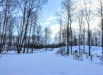 226 Acres Private Forest in the St. Lawrence Valley Madrid NY