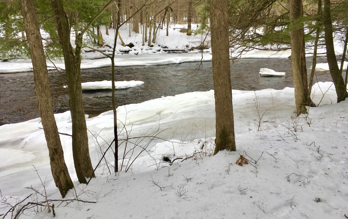 6 acres Waterfront Land for Sale on the Deer River, Brasher, NY!