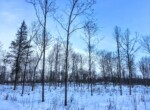 226 acres Land for Sale With Cleared Building Site and Driveway, Madrid, NY!