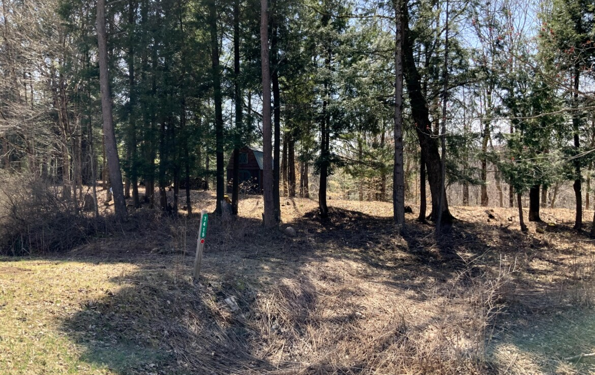 5 acres Cabin Site with Shed Trenton NY