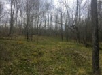 56 acres Hunting Land for Sale Bordering State Land, Hopkinton, NY!