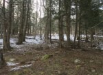 Northern Zone Hunting and Fishing Land with Water & Forest Views!