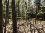 10 acres Secluded Land for Sale on Sandy Creek Gorge, Lorraine, NY!