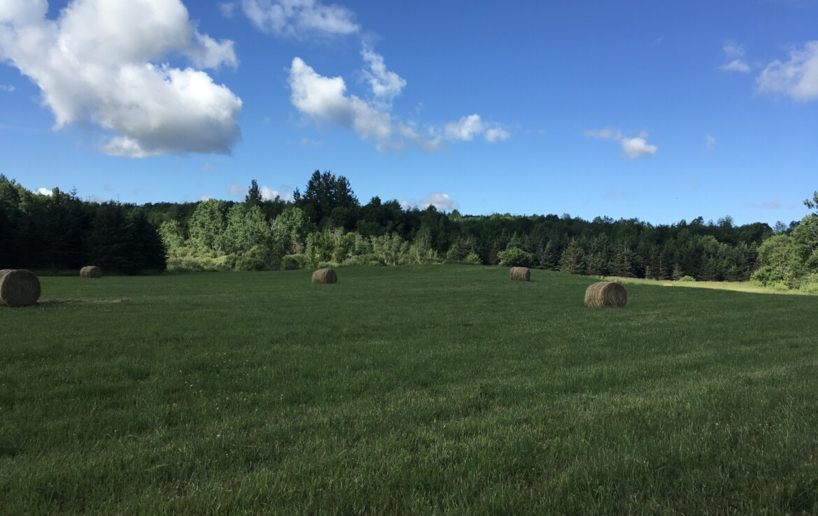 4 acre Country Building Lot Russell NY