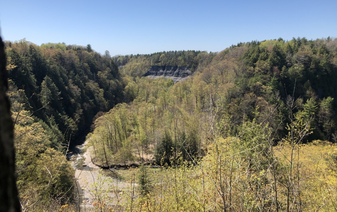 30 acres Land for Sale with Views of Sandy Creek Gorge, Lorraine, NY!