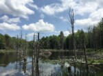 4 Season Property with Interior Trails, Large Meadow, Ponds, and Rustic Cabin!